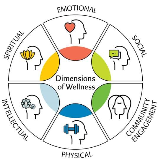 six dimensions of wellness wheel